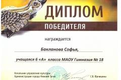 Диплом. Серая Шейка. Бакланова Софья 2017