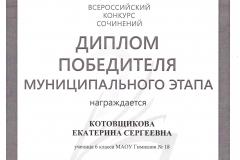 Котовщикова Екатерина. ВКС 2018