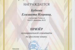 Олимпиада РЯ Бубнова 2017
