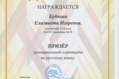 Олимпиада РЯ Бубнова. 2017