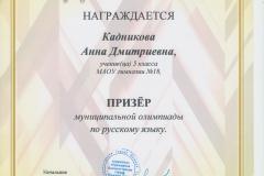 Олимпиада РЯ Кадникова 2017